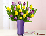  photo proflowers_zps565f6b9e.png